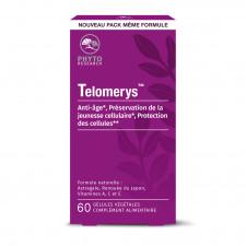 Telomerys